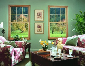 Double Hung Windows Joplin MO